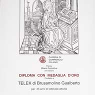 Telek - Diploma Milano Produttiva 2012